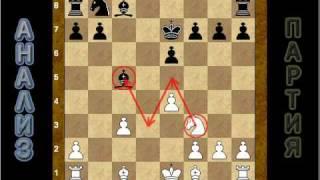Шахматное видео: охота на слона (часть 2)