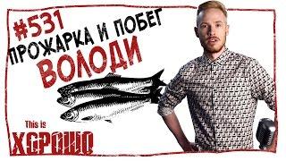 This is Хорошо - Прожарка и побег Володи #531