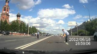 Смотреть онлайн Утка с детьми переходит дорогу