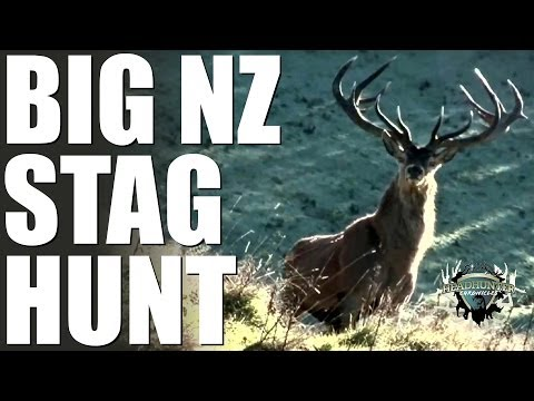 Headhunter Chronicles – Bow hunting big reds and sambar in New Zealand