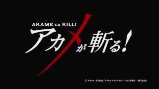 Превью к трейлеру Убийца Акамэ!
