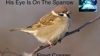◉ Gospel ◉  His Eye Is On The Sparrow by Floyd Cramer ♫ ♪ ♪