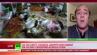 UNSC adopts document on 30-day ceasefire across Syria