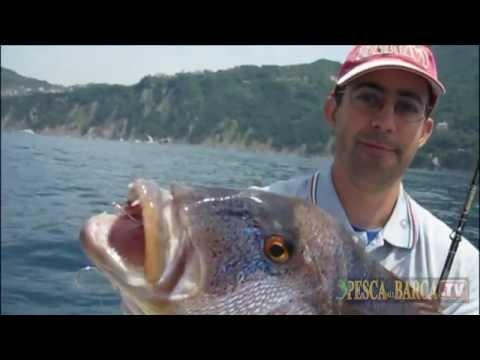 Pesca russa mobile desolata che profondità