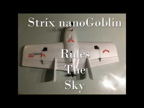 rule-the-sky--strix-nano-goblin