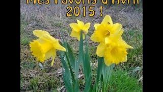 Mes Favoris d'Avril 2015 !!
