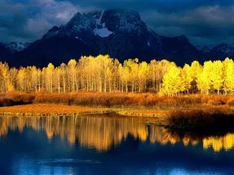 """When The Aspens Turn To Gold"" by Gordy Thomas"