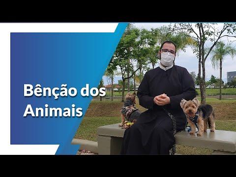 Benção dos animais