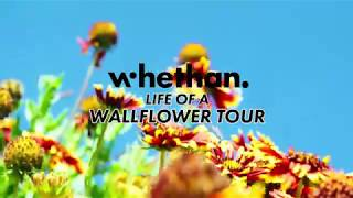 Whethan   Life Of A Wallflower Tour Trailer