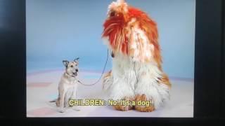 Elmo's World All About Animals Quiz