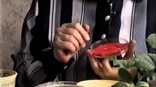 Подготовка семян огурцов к посадке видео