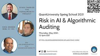 Risk in AI & Algorithmic Auditing