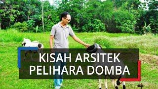 Cerita Arsitek Pelihara Domba Garut di Bogor, Awalnya 6 Ekor Kini Ada Puluhan