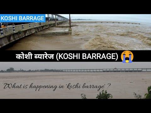Koshi Barrage (कोशी ब्यारेज) heavy flooding | कोशी मा के भैरहेको छ ? तराई डुबान | Koshi River Visit