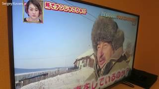Русская зима глазами японцев. Смотрим японский телевизор