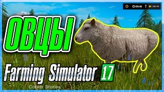 Farming Simulator 17. Гайд по овцам.