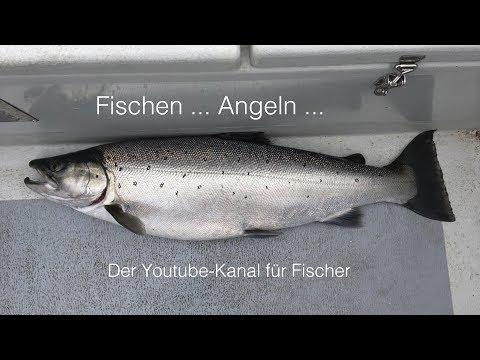 Fischen… Angeln…