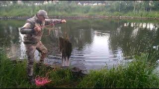 На косу рыбалка