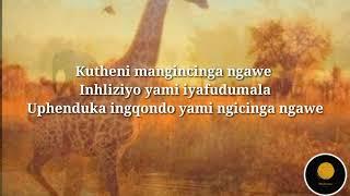 Mlindo The Vocalist Ft Shwi Nomtekhala   Wamuhle Lyrics