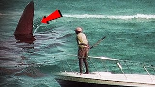 7 การค้นพบฉลามยักษ์เมกาโลดอนที่เชื่อว่ามันยังมีชีวิตอยู่บนโลกใบนี้