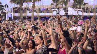 Best of Avicii 2014