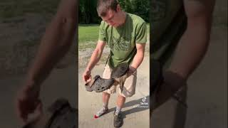 GIANT SNAPPING TURTLE VS CROC!