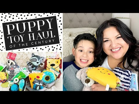 Puppy Toy Haul Of The Century | Northern Inuits | The Nitwit Mom