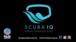 Scuba Diving Port Douglas - PADI open water course