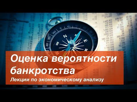 Выпуск III Оценка вероятности банкротства