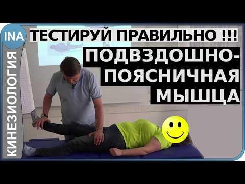 Мышечное тестирование. Подвздошно-поясничная мышца. Кинезиология. Германия