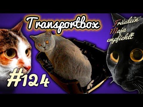 Transportbox - Auswahl, Gewöhnung und Transport in der Box - Fräulein Maja empfiehlt Teil 124