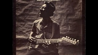 Picture of a band or musician: Hound Dog Taylor