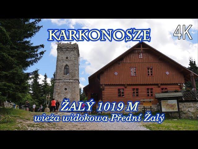 Video Aussprache von widokowa in Polnisch