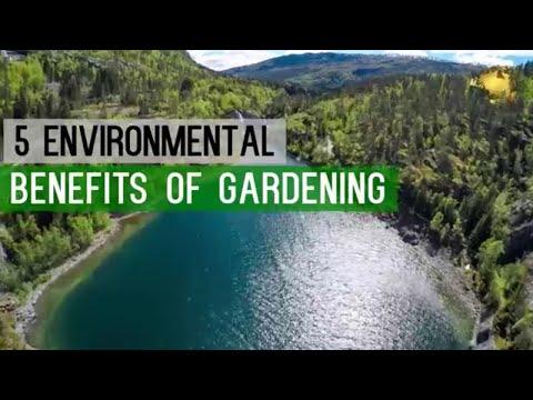 GARDENING: SAVE THE WORLD - Environmental Benefits - Gardening Hobby and Plants - GO GREEN!