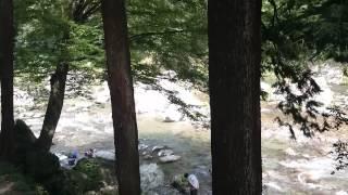 西秋川ドライブイン キャンプ場のイメージ