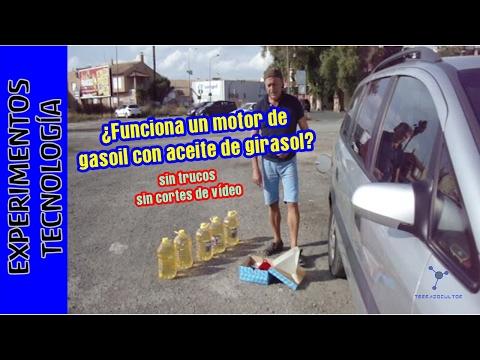 Ahorra repostando con ACEITE DE GIRASOL en tu coche diesel