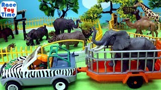 Wild Animals Toys At The Zoo Park For Kids - Learn Animal Names Video