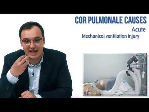 Cor Pulmonale: Causes