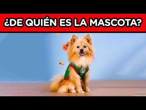 ADIVINA LA MASCOTA DEL YOUTUBER   CONOCE LAS MASCOTAS DE LOS YOUTUBERS   YOU OCIO