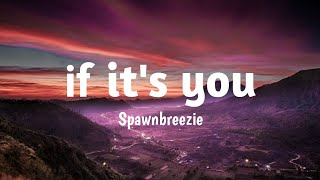 Long Dark Hair, With Beautiful Eyes Tiktok Song| Spawnbreezie - If Its You Lyrics