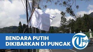 Bendera Putih Dikibarkan di Kawasan Puncak Bogor, Pokdarwis : Wisatawan Sudah 2 Tahun Jeblok