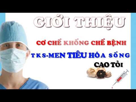 Cơ chế, tác dụng của TKS-Men tiêu hóa sống