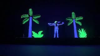 Unique neon light show