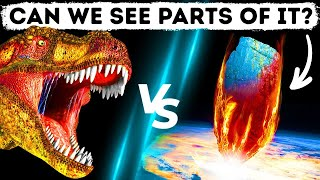 They Can't Find Asteroid That Wiped Out Dinosaurs