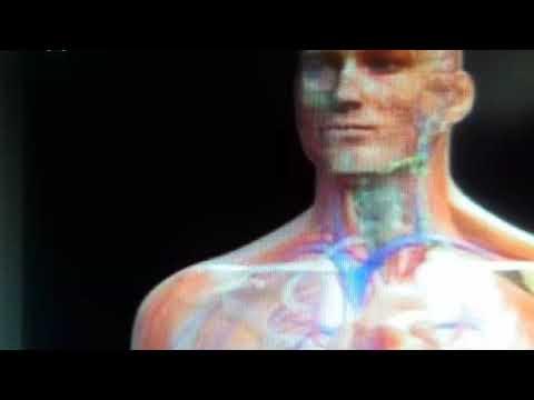 Ce infecție poate provoca dureri articulare
