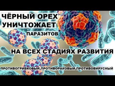 Касторовое масло лечение от паразитов