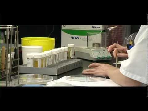 Consequence du papillomavirus chez l homme
