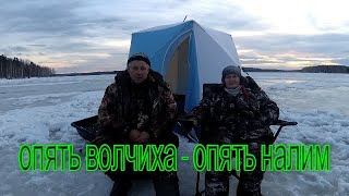 Отчеты о рыбалке волчихинское водохранилище 2020