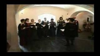 Cantio antiqua Praha: Live at Dobrichovice chateau 2007