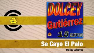 Video Se Cayo El Palo (Audio) de Dolcey Gutierrez
